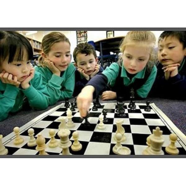Σχολικό σκακιστικό υλικό