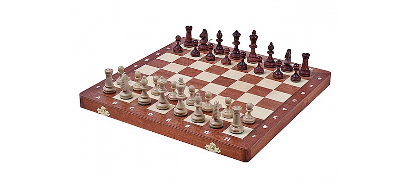 Σκάκι ταξιδίου μαγνητικά